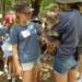 koala love 2