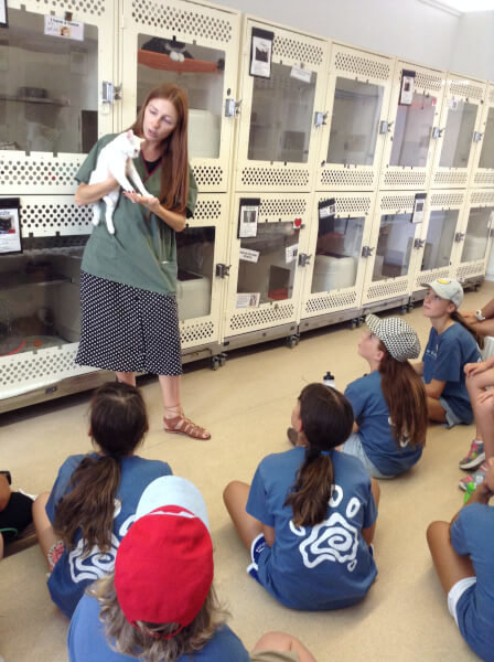 meeting kitties at CPS
