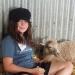 Wombat with lamb Jan 2015