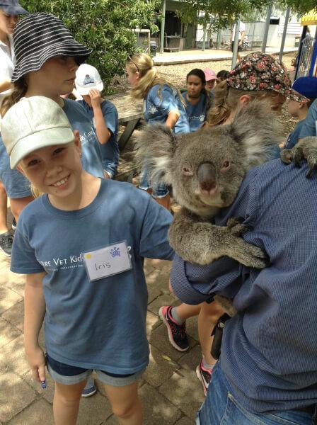 koala love 4